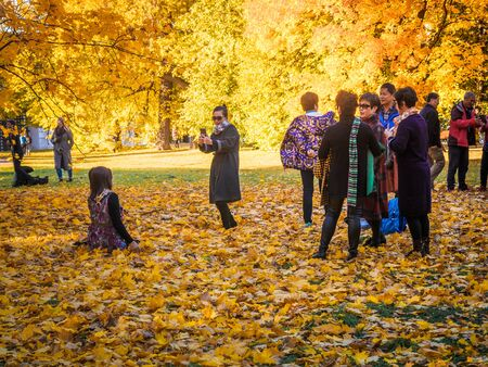 Moscow, Russia - October 11, 2018: Chinese tourists walks autumn park. Asian people take pictures on the background of a beautiful yellowed fallen maple leaves in the autumn park. Sunny day in the city park Izmailovo.