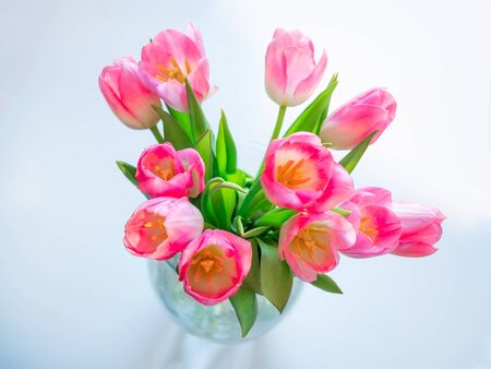 A bouquet of pink tulip flowers in a glass vase with water top view