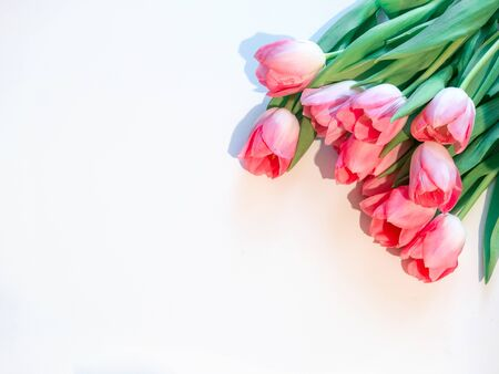 Pink flowers white background. Bouquet flowers rose tulips in the upper rigrt corner on an isolated white background. Flat lay mock up, top view Фото со стока