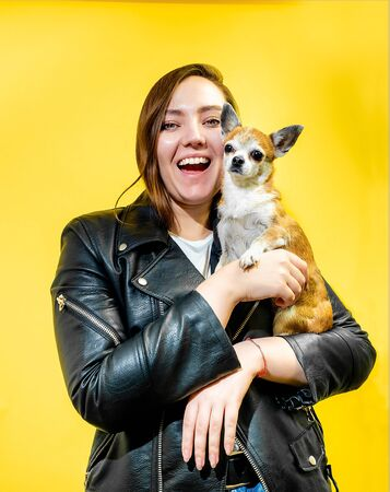 Young girl with a cute little dog on her hands yellow background around. Pretty girl with curvaceous body posing at the camera smiling with a small chihuahua dog.