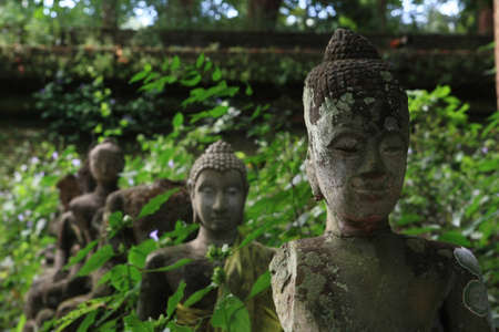 Statues of Buddha in a forest temple  Chiangmai, Thailand