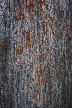 Close-up surface of dirty old wood