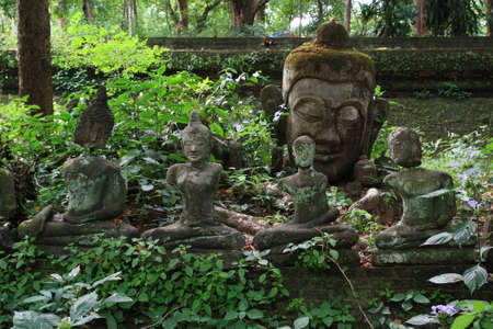 Ancient statues of Buddha in a forest temple (Chiangmai, Thailand) Stock Photo - 16642653