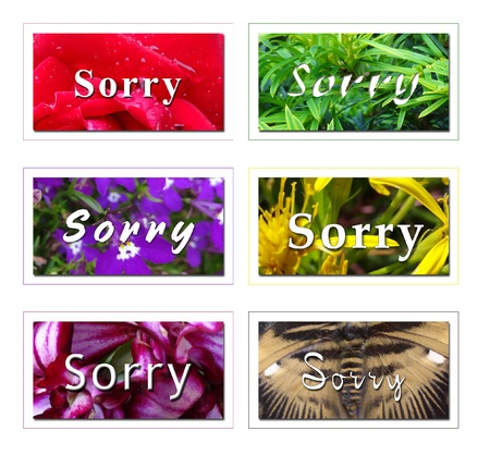 condolence: Sorry Card Note