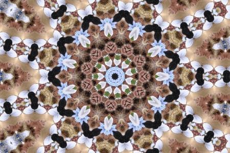 Brown and White Mandala II. photo