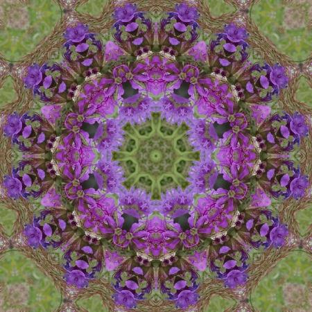 kaleidoscope:  Purple Floral Mandala