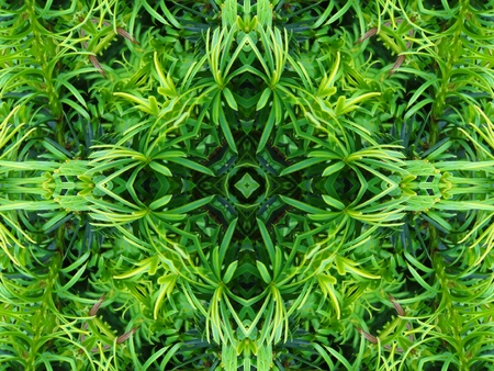 Green Mandala Cross Stock Photo - 10324643
