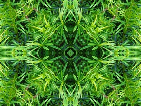 Green Mandala Cross Stock Photo - 10324643