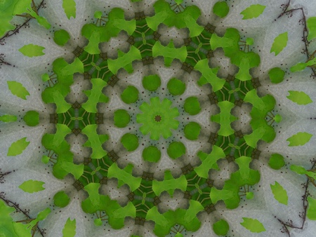 Green and Grey Mandala Flower Stock Photo - 10324637