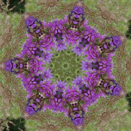 Prple and Green Mandala photo