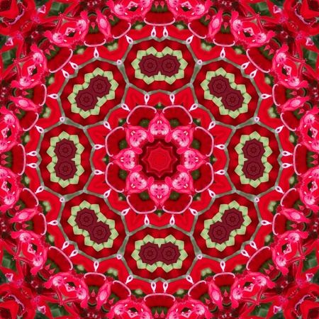 Red Mandala Flower Stock Photo - 11799067