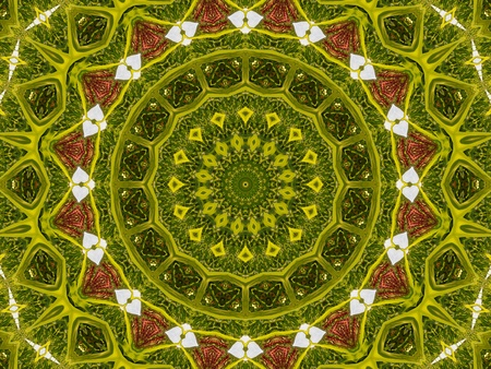 Green Mandala photo