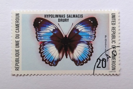 CAMEROON - CIRCA 1978: Stamp printed in CAMEROON shows a Hypolimnas Salmacis Drury butterfly, circa 1978 Stock Photo - 13022843