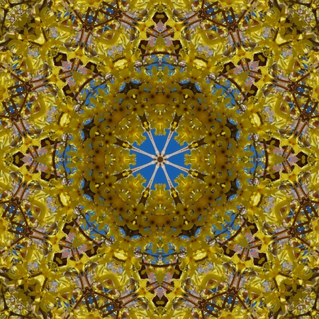 Shining Mandala Flower Stock Photo - 13182030