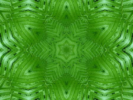 Green Mandala Star                                photo