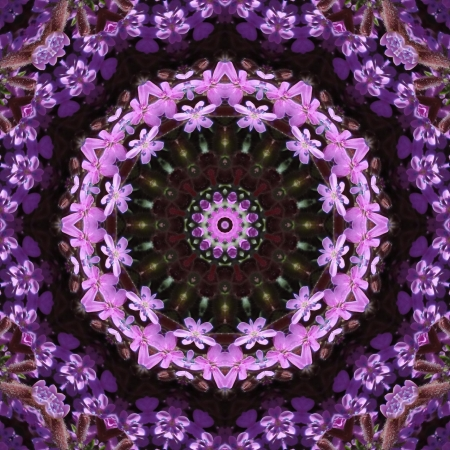 Purple Mandala Stock Photo - 14347281