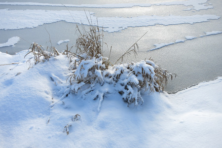 snowcovered: Dry snow-covered grass