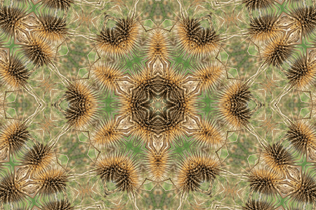 Floral brown and green mandala background