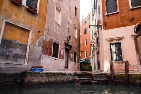 venice: Venice Street