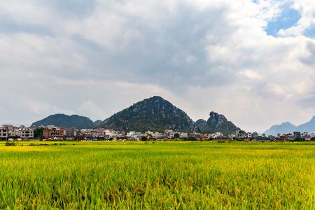 guangdong: China Guangdong Fengkai landscape view