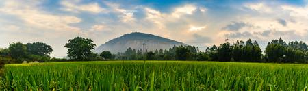bucolic: China Guangdong Fengkai landscape view