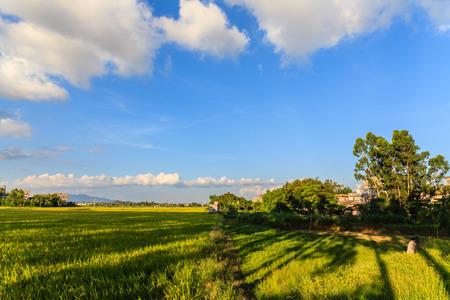 guangdong: Guangdong Kaiping view