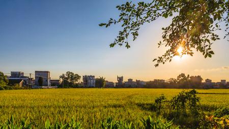 guangdong: Guangdong Kaiping bucolic