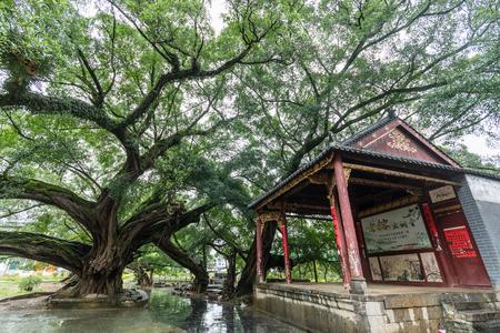 Guangxi Jinjin Ancient Town