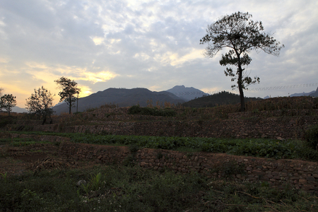 farmland: Taihang farmland