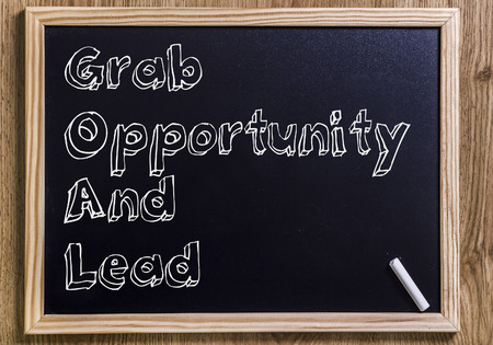 Grab Opportunity And Lead GOAL - New chalkboard with outlined text - on wood