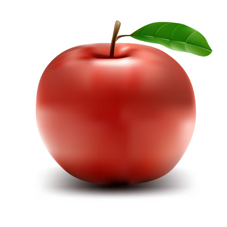 Healthy Apple - isolated vector illustration