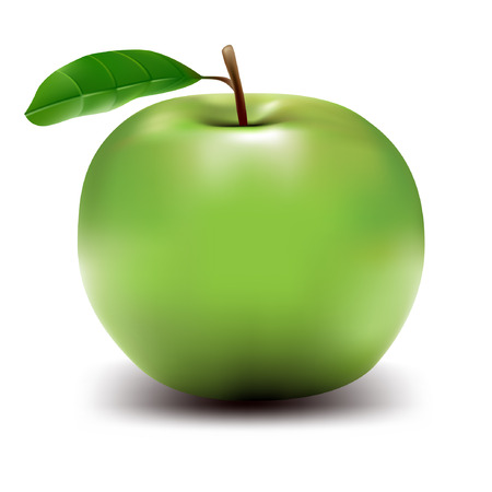 healthy green apple - realistic vector illustration