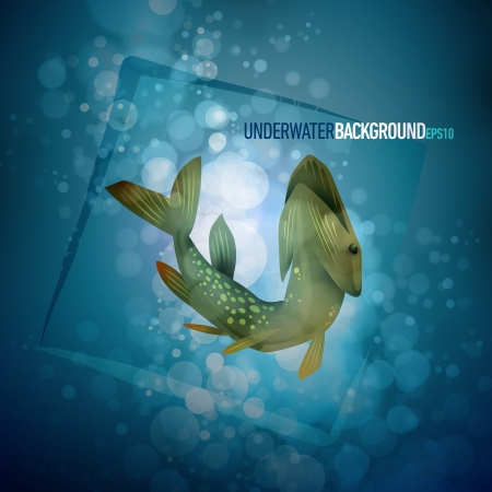 Pike capture   Underwater background 向量圖像