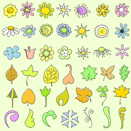 doodle flowers and leaves - set Vector