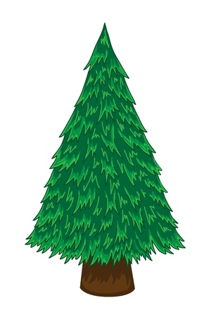 Cartoon pine tree on white background Vector