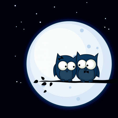 Valentines Day card with cute owl couple sitting on a branch, with the moon in the background