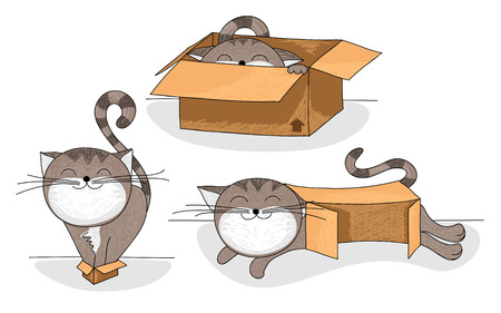 gray cat: Cute and funny cartoon cat in different sized cardboard boxes