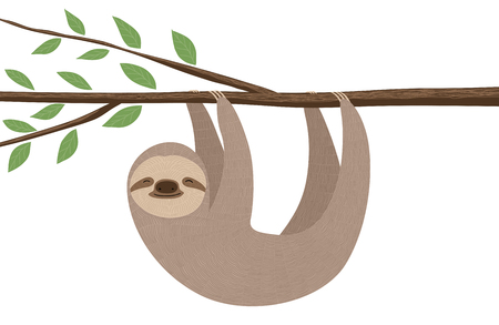 Illustration of cute sloth hanging on a tree branch