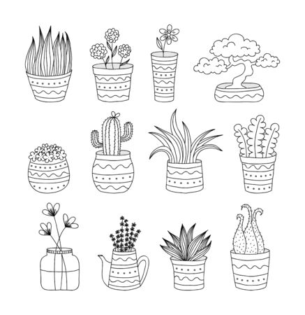 Collection of 12 doodle flower pots with various plants, suitable for coloring