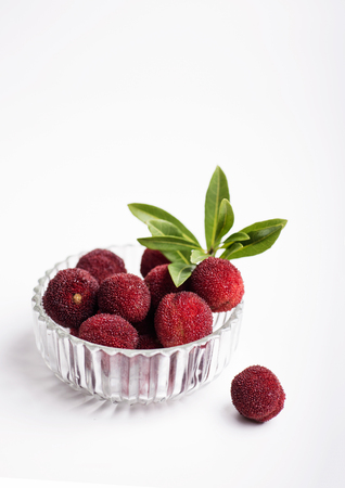 red bayberry Stock Photo
