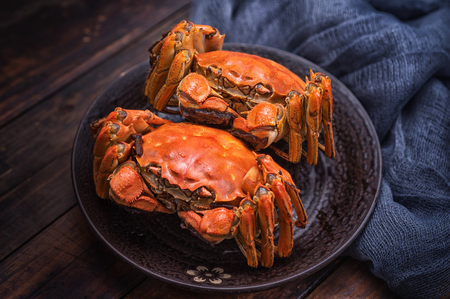 Two cooked hairy crabs on the table. Stockfoto