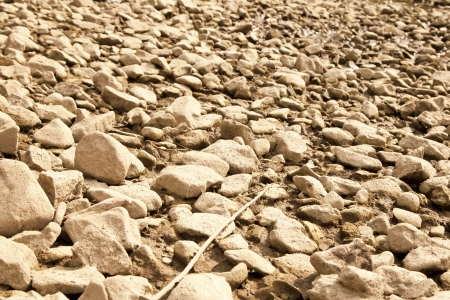 riverbed: Dry riverbed in drought hit area
