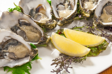 mouthwatering: Fresh oysters with lemon wedge