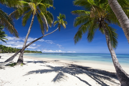Tropical paradise on Fiji island Stock Photo