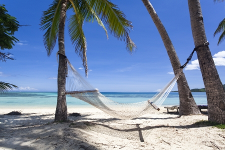 Tropical paradise beach with hammock photo