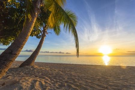Sunset on tropical Fiji island photo