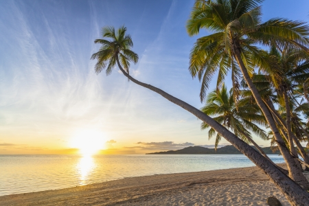 fiji: Sunset on tropical Fiji island Stock Photo