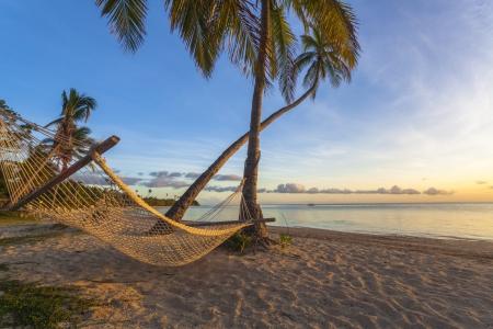 fiji: Tropical paradise beach at sunset with hammock