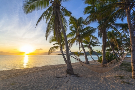 Tropical paradise beach at sunset with hammock photo