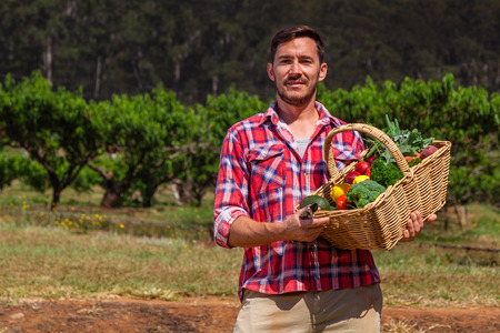 young farmer: Organic farmer with fresh fruit and vegetables in garden Stock Photo